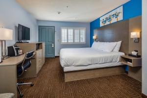 Accessible room - Room view